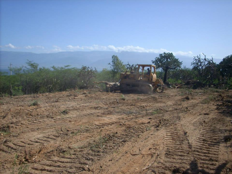 """Destrucción en """"Trocha de Zoquete"""", en la reserva biológica Loma Charco Azul. Tomado de: https://www.facebook.com/photo.php?fbid=10151738125639770&set=a.10151738125349770.1073741837.83964234769&type=3&theater"""