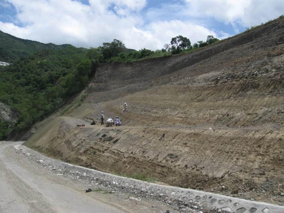 Corte en carretera en la comunidad El Pinar, donde se pueden apreciar una alternancia de niveles de limos, ocasionalmente edafizados, con lentejones de arenas y gravas, propio de un ambiente fluvial de llanura